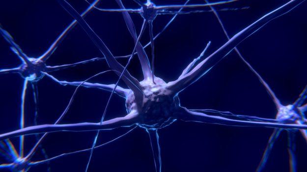 neurodegeneracion esclerosis múltiple