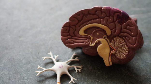 ataque mielina
